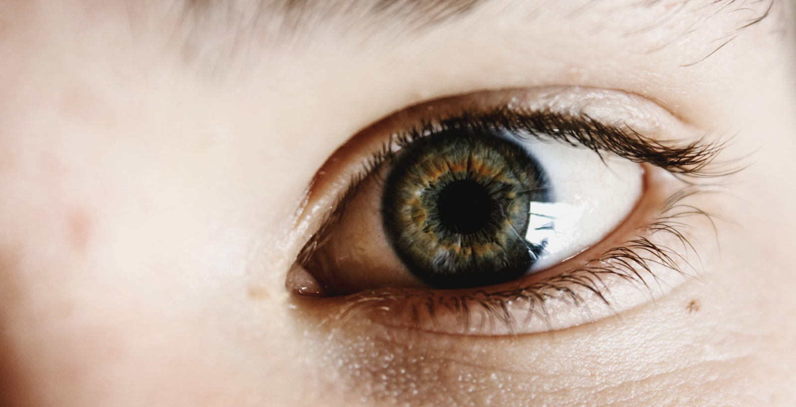 Close up of a hazel colored eye,